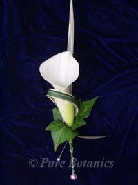 Elegant white calla lily buttonhole