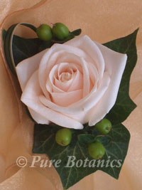 Cream rose buttonhole with hypericum