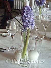 Hyacinth restaurant table flowers