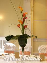 Mango calla lilies decorating a wedding at Brandon Hall, Coventry