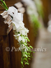 orchid pew ends at a wedding ceremony