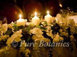 Phalaenopsis orchid in a top table wedding arrangement