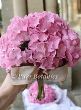 Pink hydrangea bridesmaids bouquet