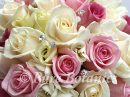 pink rose wedding bridal bouquet