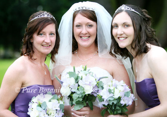 bride and bridesmaids with purple wedding flowers at Ansty Hall, Coventry