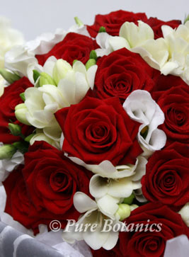 red and white wedding bouquet with passion roses and fressias