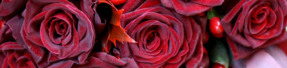 red rose wedding flowers in close up