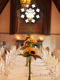 Long gallery decorated with sunflowers for a wedding