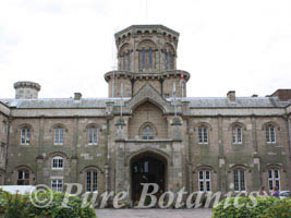 The outside of Studley Castle shortly after i arrived to deliver wedding flowers