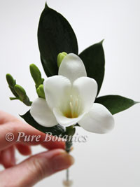 white fressia wedding buttonhole flower