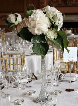 White hydrangea centerpieces at Stanford Hall, Leicestershire
