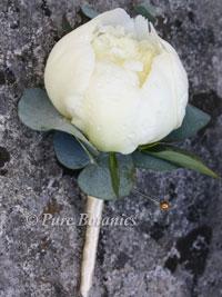 white peony buttonhole
