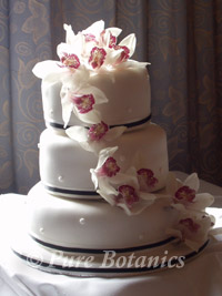 a wedding cake decorated in orchids