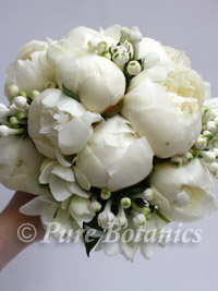 peony, bouvardia and freesia bridesmaid bouquet