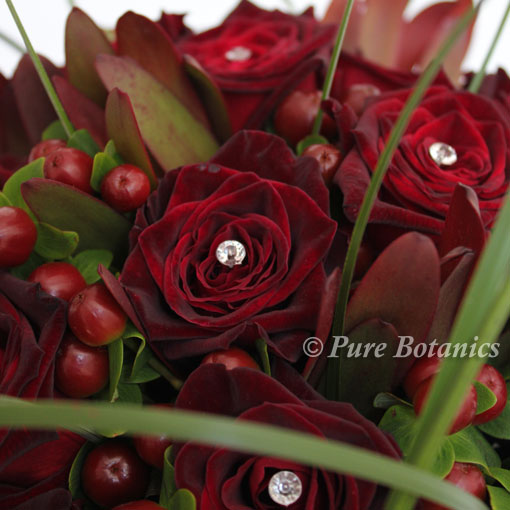 Black Baccara Roses For A Deep Burgundy Red Colour Theme Pure Botanics