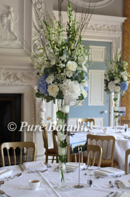Hydrangea, rose, gypsophila wedding decorations.
