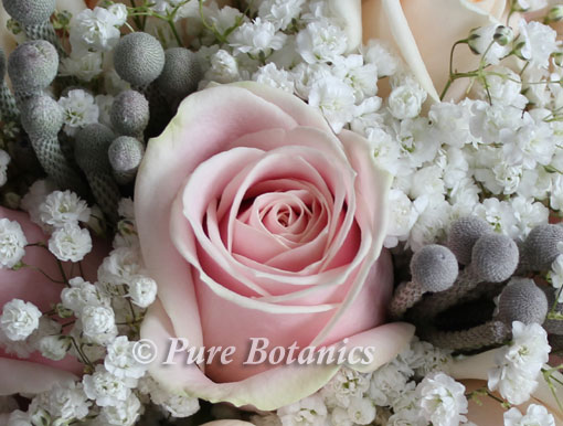 bruni in close up of wedding bouquet
