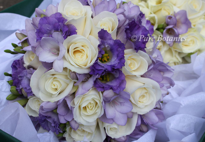 Handtied posy bouquet featuring lilac lisianthus, freesias and ivory roses.