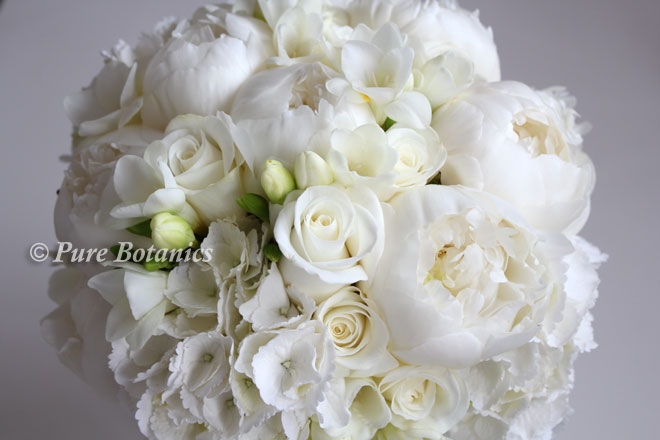 Hydrangea Wedding Flowers Pure Botanics