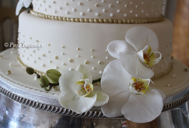 Phalaenopsis orchids decorating a wedding cake.