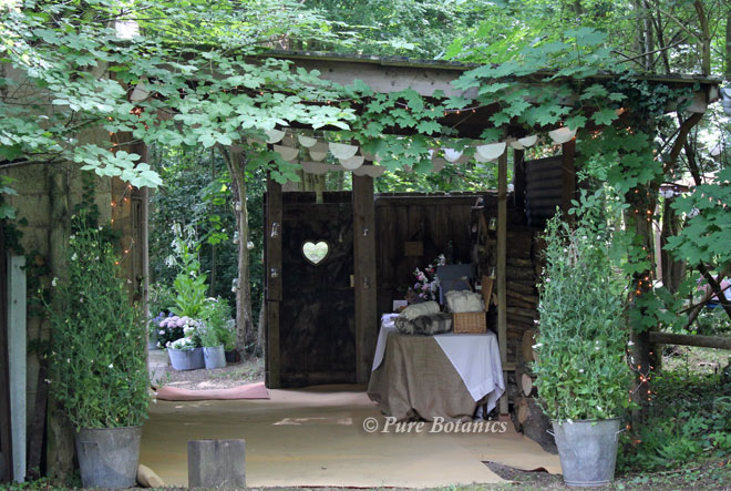 Thick greenery creates the entrance to a wedding in a wood.