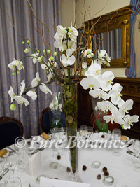 tall orchid centerpiece for a wedding