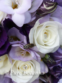 posy bouquets for bridesmiads wearing purple dresses