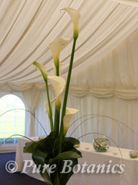 Tall calla lilies used as centerpieces for wedding at Wethele Manor, Warwickshire