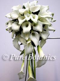 White calla lily bridal bouquet
