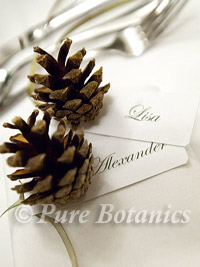 winter place settings with fir cones