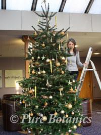 corporate-christmas-tree