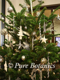 close up photo of a nordman christmas tree with silver and white baubles