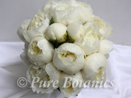 a wedding posy bouquet of white peonies