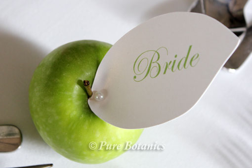 Green apple wedding theme pure botanics green apple place setting cards junglespirit