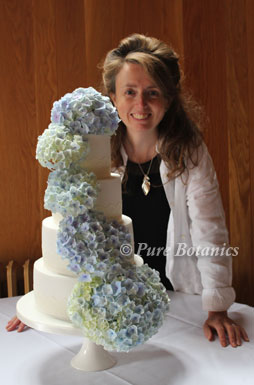 Blue hydrangea's cascading down a four tier wedding cake.