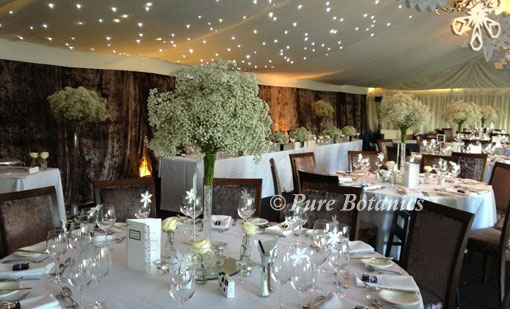 Gypsophila Winter Wonderland Wedding Theme Pure Botanics