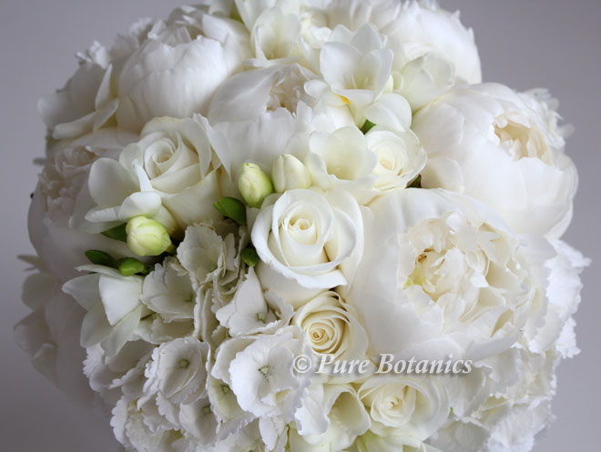 Posy bouquet featuring roses, peonies, hydrangeas and feesias.