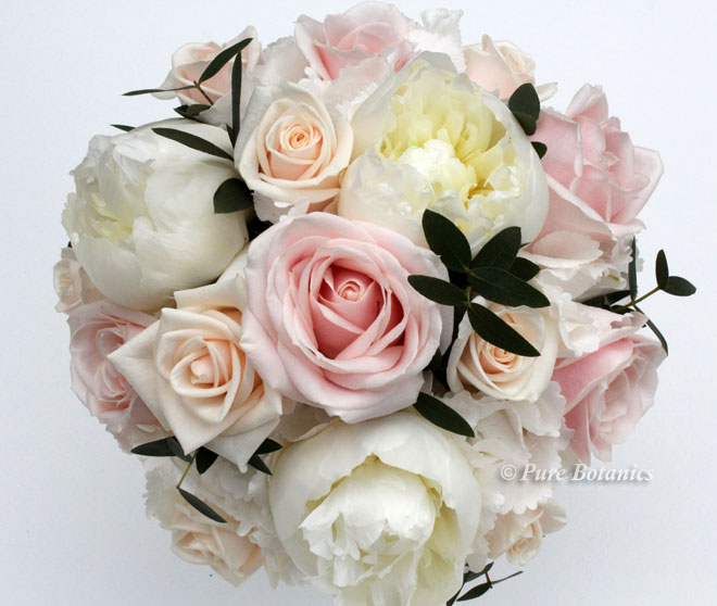 Sweet Avalanche blush pink and cream vendela roses arranged with peonies and hydrangea in a bridal posy bouquet.