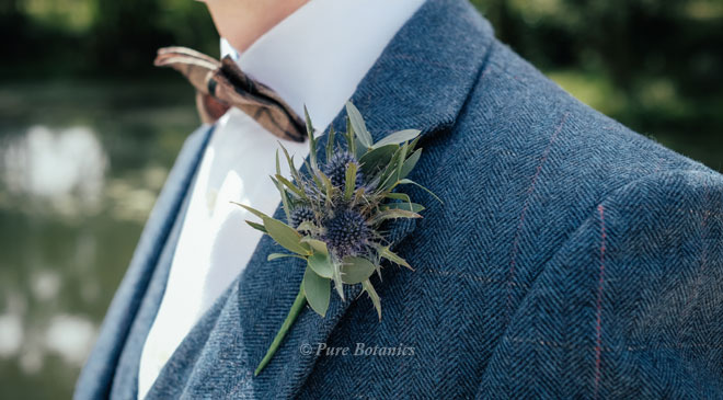 Blue thistle buttonhole for a tweed wedding suit.