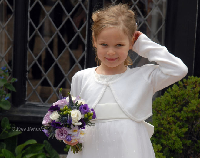 Flower girl posy in purple, blue and ivory.