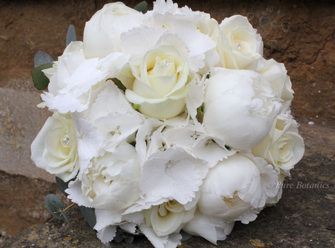White peony, hydrangea and rose posy bouquet for a wedding at Ettington Park hotel.