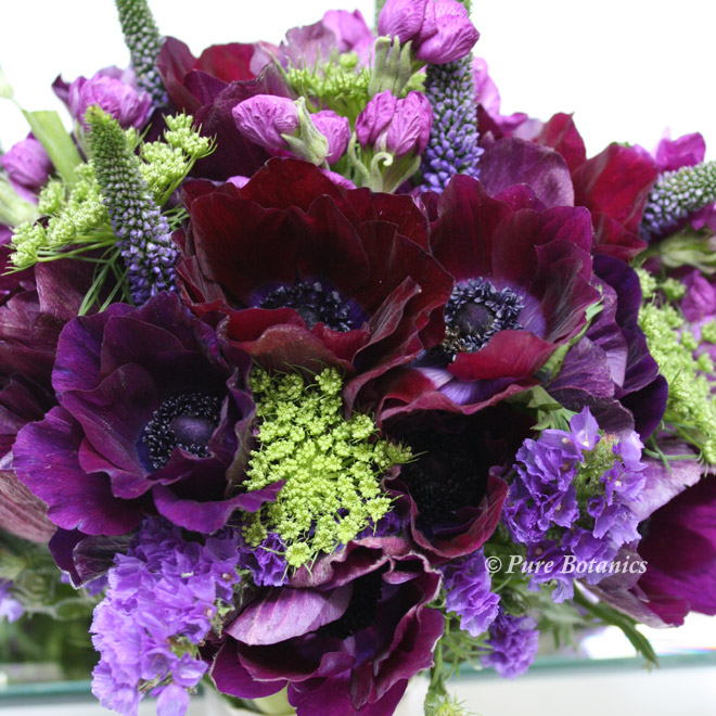 Deep purple and burgundy red anemones in a bridal bouquet.